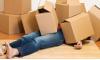 Költöztető dobozok az átlátható költözésért